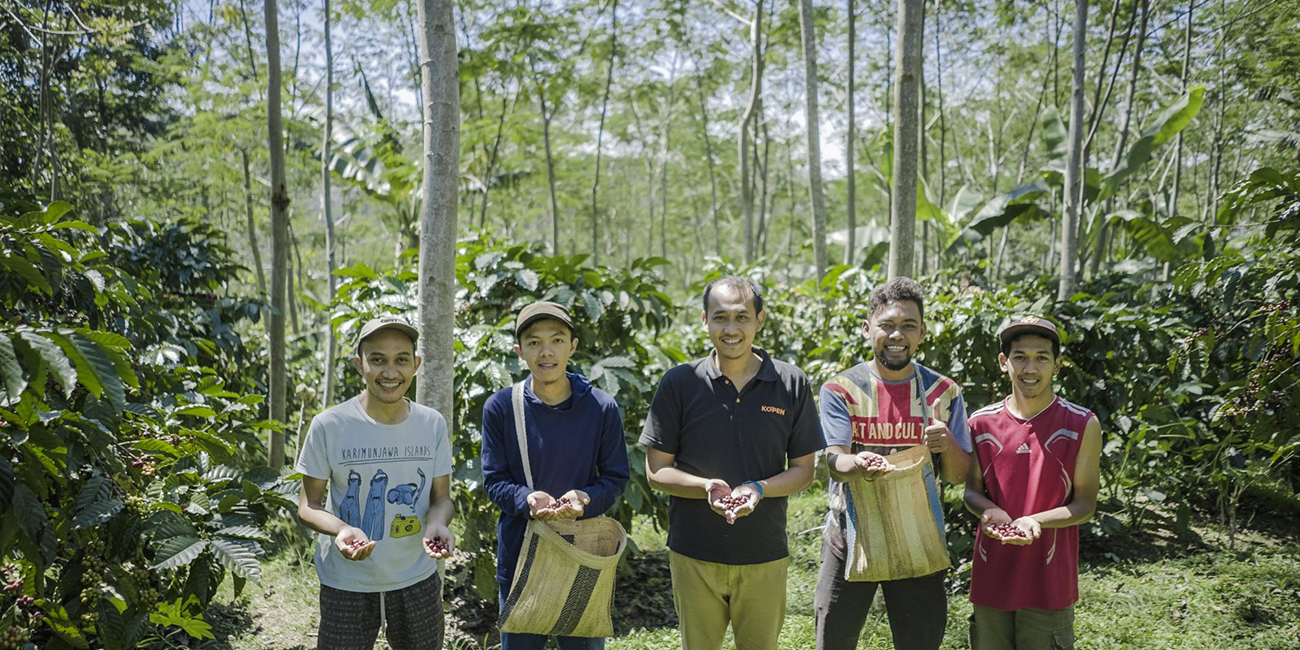 our coffee farmers shows red beans